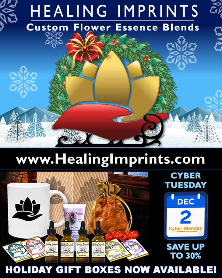 Healing Imprints Holiday Ad